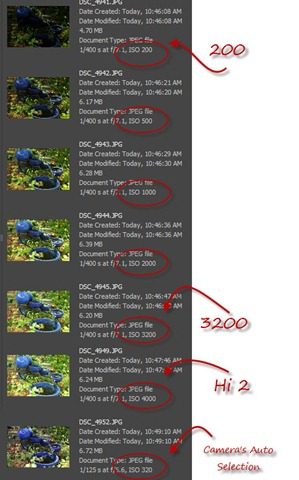 10-5-2010 12-38-37 PM copy